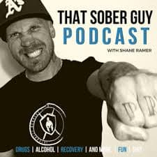 Dr. Stanger on That Sober Guy Podcast